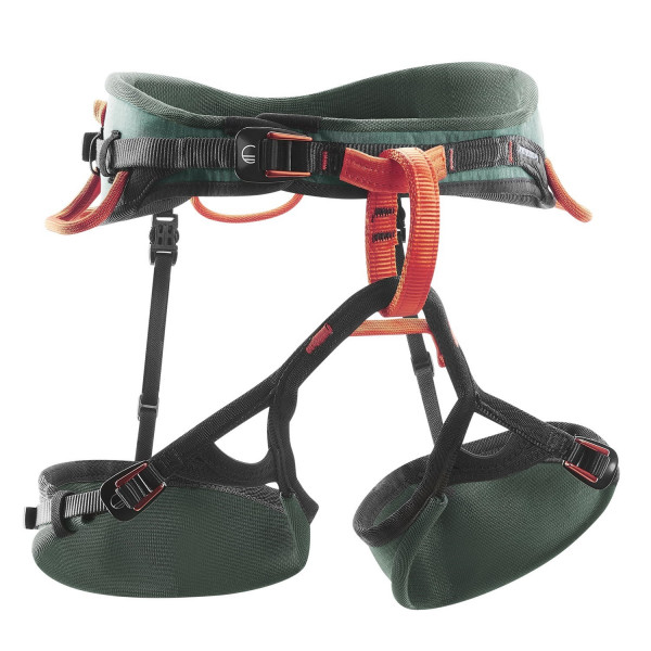 SESSION MEN'S HARNESS